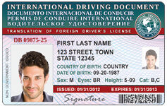 international drivers licence